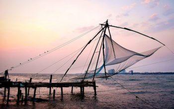 kochin-nets
